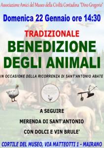 S.Antonio 2017